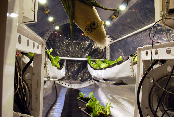 Growing Plants on the Moon and Mars